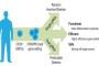 Де не справляється людська – впорається бактеріальна імунна система