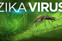 Zika virus might cause Guillain-Barré syndrome, according to new evidence