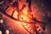Viruses revealed to be a major driver of human evolution