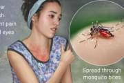 ВООЗ заявила про закінчення надзвичайної загрози через вірус Зіка