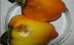 Детекція P. mirabilis та E. cloacae в томатах та перці і виділення їхніх бактеріофагів