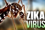 Zika virus: Outbreak 'likely to spread across Americas' says WHO
