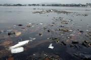 Кількість вірусів у водах Ріо-де-Жанейро набагато перевищує рівень небезпеки