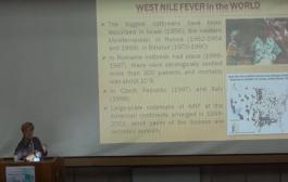 Н. Виноград доповідає про лихоманку Західного Нілу (відео)